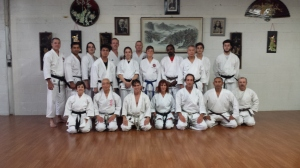 Hotton sensei seminar. Autumn 2015 at Black Tiger Karate.