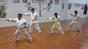 Practice of karate basics.