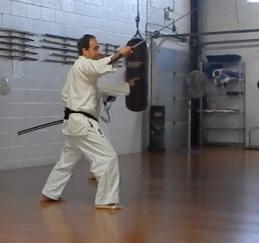 Kenjutsu - shato